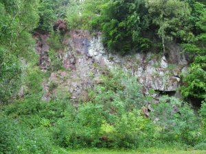 Killerton Lamprophyre quarry - face height approx. 30m